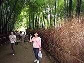 京阪神五日遊:IMG_0619.JPG