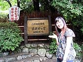 京阪神五日遊:IMG_0629.JPG