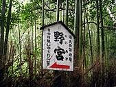 京阪神五日遊:IMG_0641.JPG