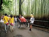 京阪神五日遊:IMG_0642.JPG