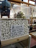 京阪神五日遊:IMG_1139.JPG