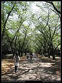 Tokyo20090910:Tokyo_utin367.jpg