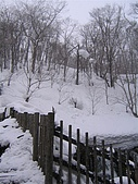 Hokkaido0301:IMG_1918.JPG