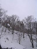Hokkaido0301:IMG_1925.JPG