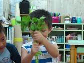 20110811_科學小博士-芹菜吸水:20110811_科學小博士-芹菜吸水 (9).JPG