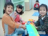 20111115_花的構造&分區:20111115-分區.JPG
