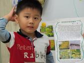 20111117_晨間操作&分享阿勃勒學習單&小小主播:20111117_分享阿勃勒學習單 (8).JPG
