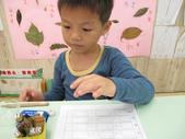 20111108_晨間操作&阿勃勒分組創作三&馬路安全教育:20111108_晨間操作 (17).JPG