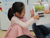 20111117_晨間操作&分享阿勃勒學習單&小小主播:20111117_分享阿勃勒學習單 (12).JPG
