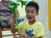 20110811_科學小博士-芹菜吸水:20110811_科學小博士-芹菜吸水 (3).JPG