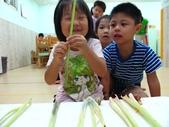 20110811_科學小博士-芹菜吸水:20110811_科學小博士-芹菜吸水 (18).JPG