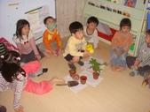 20111115_花的構造&分區:20111115-有趣英文課 (9).JPG