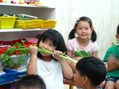 20110811_科學小博士-芹菜吸水:20110811_科學小博士-芹菜吸水 (6).JPG