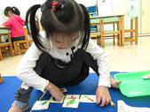 20111108_晨間操作&阿勃勒分組創作三&馬路安全教育:20111108_晨間操作 (2).JPG