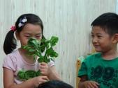 20110811_科學小博士-芹菜吸水:20110811_科學小博士-芹菜吸水 (7).JPG