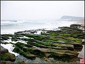 綠色礁岩海岸:老梅綠色礁岩海岸 (12).jpg