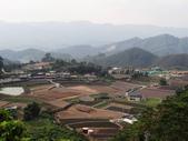 馬那邦山:馬拉邦山 (114).jpg