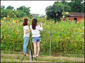 2013向陽農場初夏:向陽農場 (14).jpg