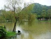 大湖公園白鷺鷥山:大湖公園白鷺鷥山 (7).jpg