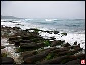綠色礁岩海岸:老梅綠色礁岩海岸 (14).jpg