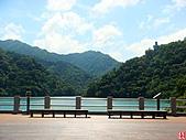石門水庫楓桐步道:石門水庫、小粗坑桐花步道 (20).jpg
