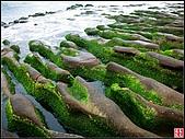 綠色礁岩海岸:老梅綠色礁岩海岸 (15).jpg