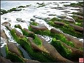 綠色礁岩海岸:老梅綠色礁岩海岸 (16).jpg