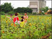 2013向陽農場初夏:向陽農場 (16).jpg