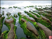 綠色礁岩海岸:老梅綠色礁岩海岸 (17).jpg
