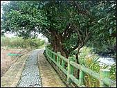八連溪生態步道:八連溪生態步道 (11).jpg