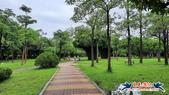 大安森林公園~黃金雨:大安森林公園~黃金雨 (12).jpg