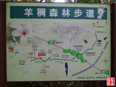 羊稠坑森林步道:羊稠坑森林步道 (7).jpg
