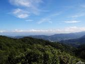 猴山岳步道香草園:猴山岳步道香草園 (10).jpg