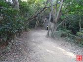 羊稠坑森林步道:羊稠坑森林步道 (9).jpg