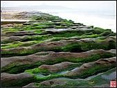 綠色礁岩海岸:老梅綠色礁岩海岸 (21).jpg