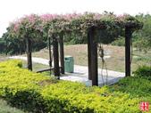 金門媽祖公園:金門媽祖公園 (17).jpg