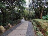 虎頭山步道:虎頭山步道 (10).jpg