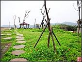 綠色礁岩海岸:老梅綠色礁岩海岸 (22).jpg