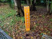 虎頭山步道:虎頭山步道 (12).jpg