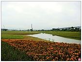 新北大橋&幸福水漾公園:新北大橋&幸福水漾公園 (4).jpg