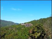 太平山山毛櫸鐵杉林:太平山山毛櫸鐵杉林 (16).jpg