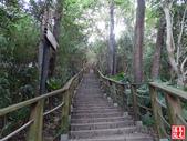羊稠坑森林步道:羊稠坑森林步道 (4).jpg