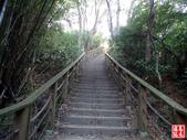 羊稠坑森林步道:羊稠坑森林步道 (5).jpg