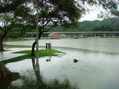 大湖公園白鷺鷥山:大湖公園白鷺鷥山 (15).jpg