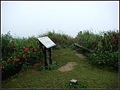 耳空龜山:耳空龜山步道 (2).jpg