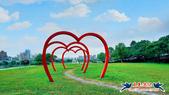 古亭河濱公園·六色香堇菜地毯花海:古亭河濱公園·六色香堇菜地毯花海 (9).jpg