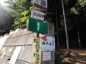 熊空竹坑山:熊空山竹坑山 (1).jpg