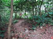 三峽雲森瀑布:雲森瀑布 (9).jpg