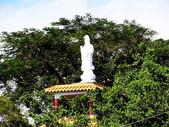 大漢溪水岸蓮座山:大漢溪水岸 (129).jpg