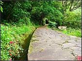 猴洞坑溪步道:猴洞溪步道 (8).jpg